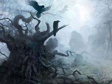 Enmarcado impresión cuervos en un bosque oscuro gótico (Imagen Cartel espeluznante horror árbol)