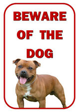 BEWARE OF THE DOG - STAFFORDSHIRE BULL TERRIER BROWN -  SIGN AND LAMINATED