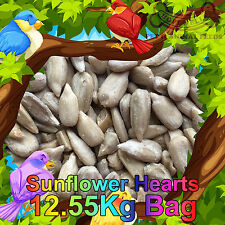 12.55KG Sunflower Hearts Premium Bakery Grade Dehulled Kernels Wild Bird Food