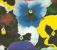 Pansy - Swiss Giants - 50 seeds - We Combine Shipping! Non-GMO
