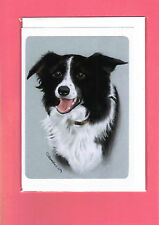 Border Collie Greeting Card / Notelet (Blank inside) #610107