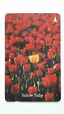 SINGAPORE PHONE CARD RED YELLOW TULIP FLOWER #2