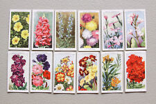 36 Garden Flowers W.D. & H.O. Wills Tobacco Cards Lot Cigarette Art Misc Vintage