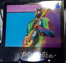PETER CETERA Self-Titled ALBUM Released 1981 Vinyl/Record  Collection US pressed