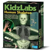 KIDZ LABS GLOW HUMAN SKELETON - GLOW-IN-THE-DARK ANATOMY SCIENCE & ACTIVITY KIT