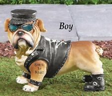 "One-Of-A-Kind Biker Boy Bulldog ""Born To Ride"" Tattoo Garden Statue"