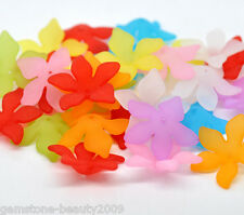 GB 80 Mixed Flower Frosted Acrylic Beads 28x7mm
