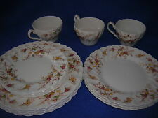Myott/Staffordshire HERITAGE 411PU china:  14 pcs. w/luncheon & salad plates