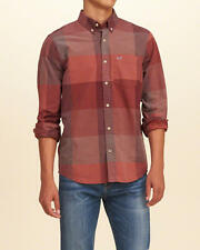 HOLLISTER Check Poplin Shirt in Burgundy Medium 2016 Summer/Fall Line $40 NWT