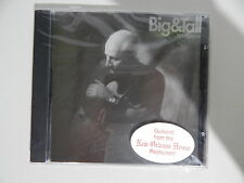 Big & Tall Rob Swaynie CD Guitarist from the New Orleans House Restaurant NEW