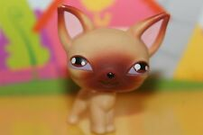 LPS Littlest Pet Shop Figur 01 Hund Chihuahua / dog Chihuahua