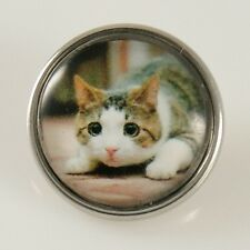 Pouncing Kitty Cat Glass Pop It Snap In Noosa Style Metal Button Chunk Charm