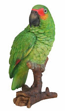 Vivid Arts-Aves de la vida real-Verde Loro Ave exótica de Amazon