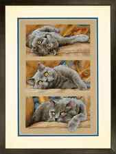Dimensions D70-35301 | Max The Cat Picture Counted Cross Stitch Kit | 25 x 38cm