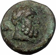 Selge in Pisidia 2nd-1st CentBC Ancient Greek Coin Bearded Hercules i47297