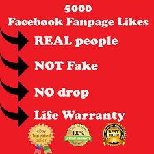 5000 Facebook International Real People Fanpage Like - Celebrity supplier