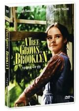 A Tree Grows In Brooklyn (1945) DVD - Elia Kazan (New & Sealed)