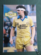 STEVE FOSTER - BRIGHTON - 1 PAGE PICTURE - CLIPPING /CUTTING