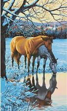 REFLECTIONS Paint by Number Kit  Horse Horses
