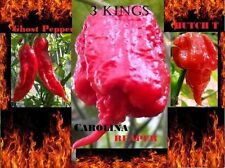COMBO PACK Ghost pepper Carolina Reaper Trinidad Scorpion Butch T chili seeds