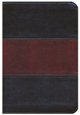HCSB Compact Ultrathin Bible---soft leather-look, saddle brown