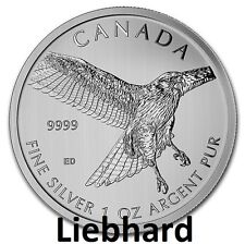 5$ Silber Kanada Birds of Prey Red Tailed Hawk / Rotschwanzbussard 1 OZ 2015