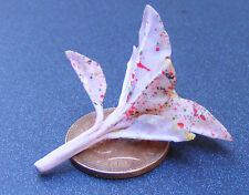 1:12 Single Pink + Spots Plant Doll House Miniature Flower Garden Accessory G25s
