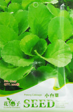 1 Pack 200 Bok Choy Seeds Brassica Pekinensis Pakchoi Garden Vegetable C047