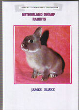 NETHERLAND DWARF RABBITS.  JAMES BLAKE