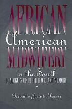 African American Midwifery in the South : Dialogues of Birth, Race, and...
