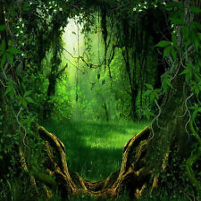 Magic Forest 8'x8' CP Backdrop Computer printed Scenic Background XLX-428