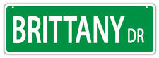 Plastic Street Signs: BRITTANY DRIVE (BRITTANY SPANIEL) | Dogs, Gifts