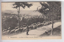 CPA  HOULGATE 14 -  BERGER & MOUTON SHEEP VUE SUR HOUGATE ROUTE VILLERS ~A42