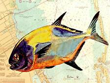 """""""PERMIT"""" NEW FISH ON CHARTS  SOLD BY ARTIST Fish Print by GULLA, COLLAGE?"""