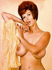 60s Nude Pinup Red Head Double D Immense Breasts 8 x 10 Photo