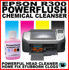 Epson Stylus Photo R300 Head Cleaner: Nozzle Cleanser  Printhead Unblocker
