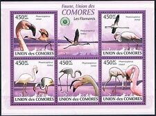 Bloc Sheet Oiseaux Flamants Birds Flamingos MNH  Neuf ** Comoros Comores 2009