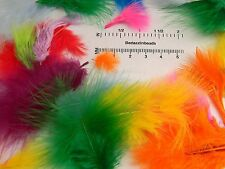 Huge Lot of 150 - 200 Assorted Mix of Bright Colored Marabou Turkey Feathers