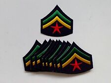 "10 RASTA Army Star / (GY) Embroidered Patches 2.5"" x 2.5"""