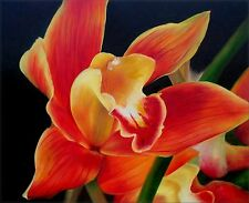 Quality Hand Painted Oil Painting Colorful Giant Orchid 20x24in