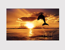 20 NEW X LARGE CANVAS WALL ART SUNSET OCEAN DOLPHIN LIVING ROOM Print picture
