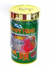 XO Humpy Head for flowerhorn - 120 grams - USA SELLER