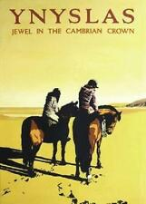 Ynyslas Jewel In The Cambrian Crown Large Poster 42 cm by 30 cm