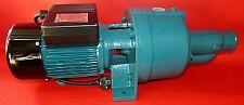 Pompe de jardin CDP-32E puissance 1500 watts