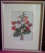 4 Blumenbilder, gemalt v. P. J. Redoute