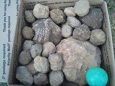 LARGE BOX OF WHOLE UNOPENED KY GEODES * 1 X-LG GEODE INCLUDED IN EVERY ORDER