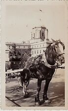 Old Vintage Antique Photograph Man Riding In Horse and Carriage 1948