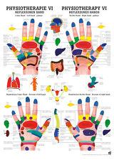 Reflexzonen Hand poster 24cm x 34cm von Rüdiger Anatomie