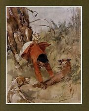 HUNTING FOX HUNTER THROWN FROM HORSE INTO SNARLING FOX VINTAGE COLOR PRINT DOG