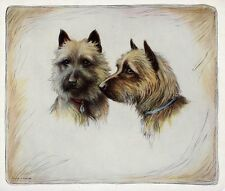 TWO CAIRN TERRIERS Vintage Circa 1920's Color Halftone Print of Dogs, Beauty!